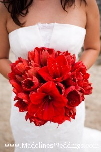 Beautiful Bouquets ~ Amaryllis!